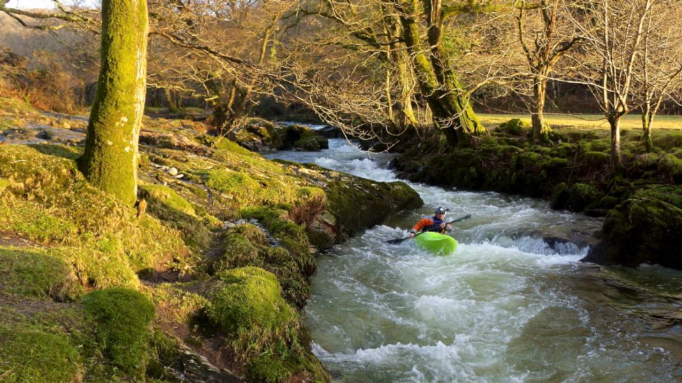 Alternating Image 2